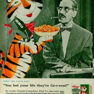 otra-genialidad-de-leo-tigre-tony